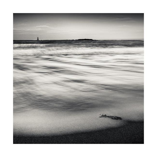 Forth, Study 13, Scotland, 2012