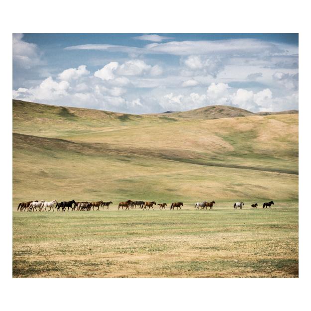 INT_Mongolia_2012_S_01330