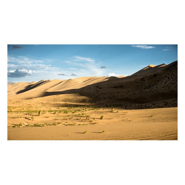 INT_Mongolia_2012_S_01599