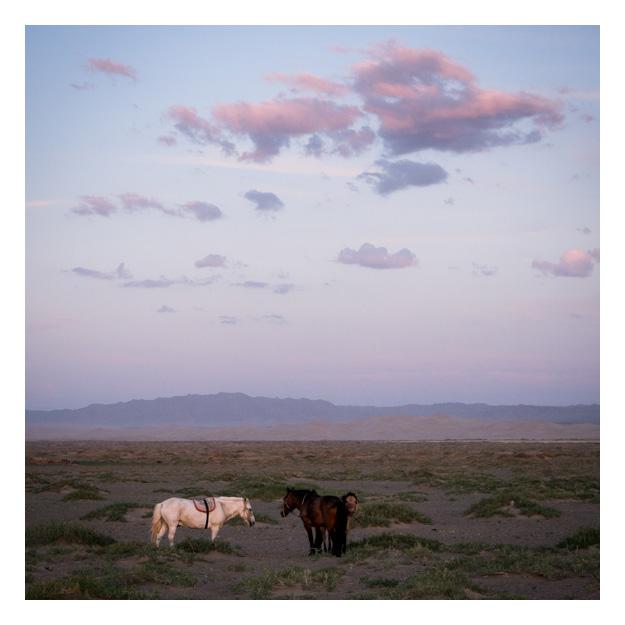 INT_Mongolia_2012_S_01788